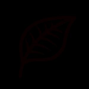 Antialergijsko